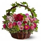 seasonal flowers online to tokyo japan