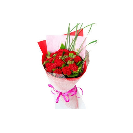 send 12 red carnations to japan