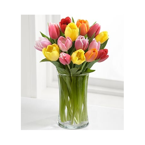 send 12 colorful mix tulip to japan