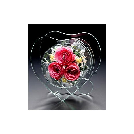 preservative pink roses to tokyo japan