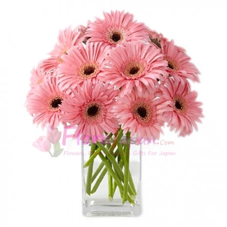 send 12 pink gerbera to japan